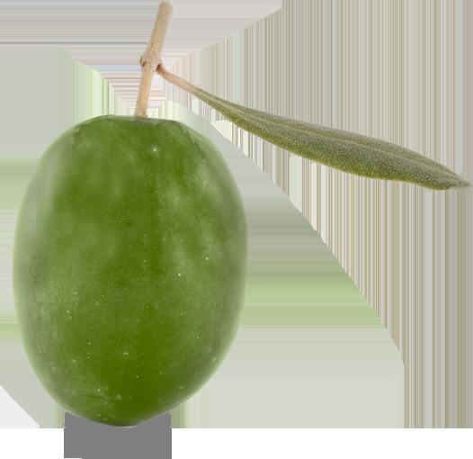 oliva-verde